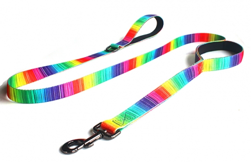 Dog Training Leash 6ft,Two Handles,Heavy Duty,for Medium Large Dogs,Rainbow Pattern